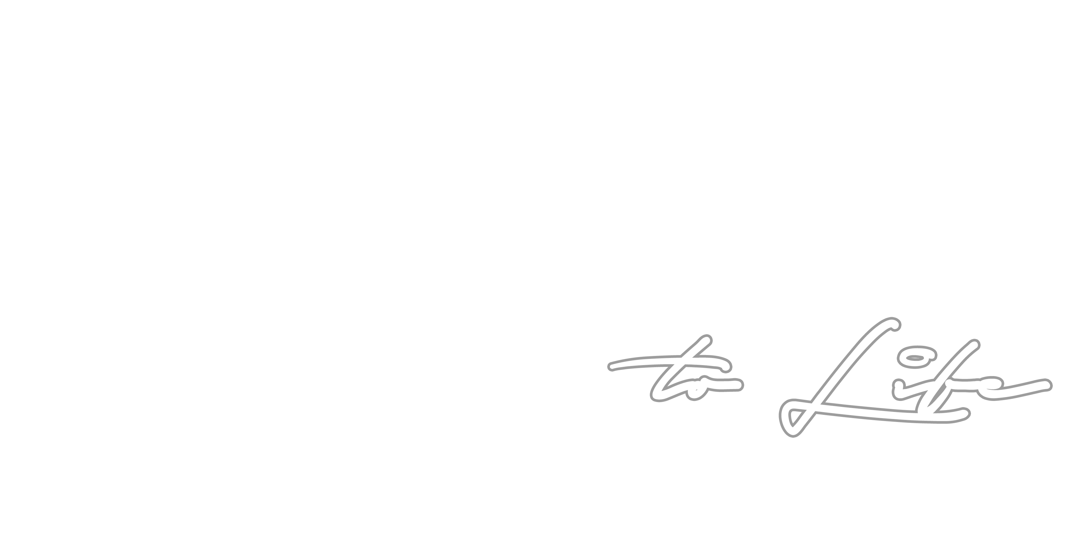 Vision To Life Productions